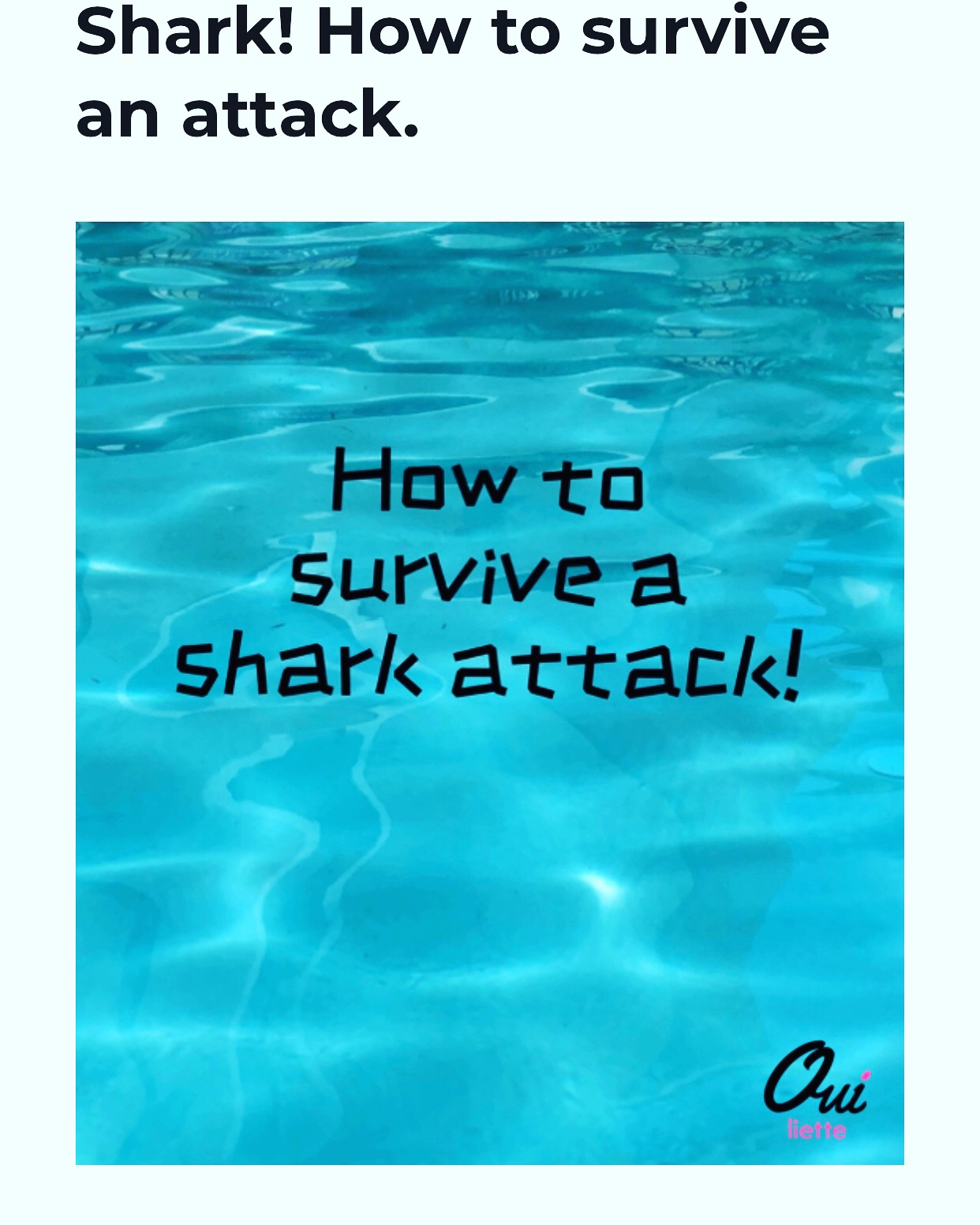 Shark! How to survive an attack.